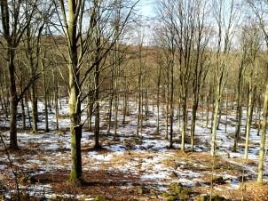 Is och stockar 2013 005