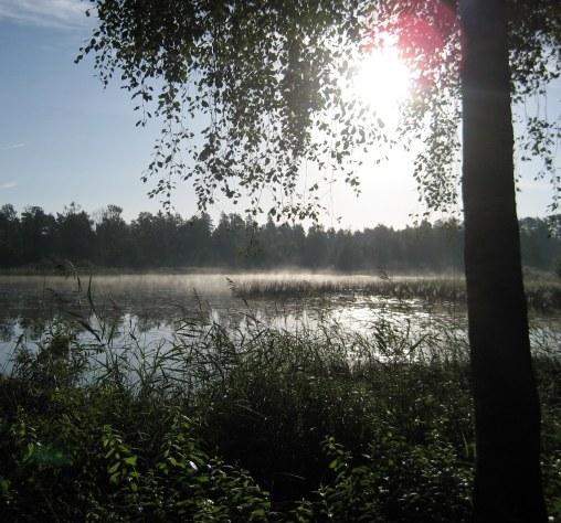 Tidig morgon på väg till campingen - Early morning
