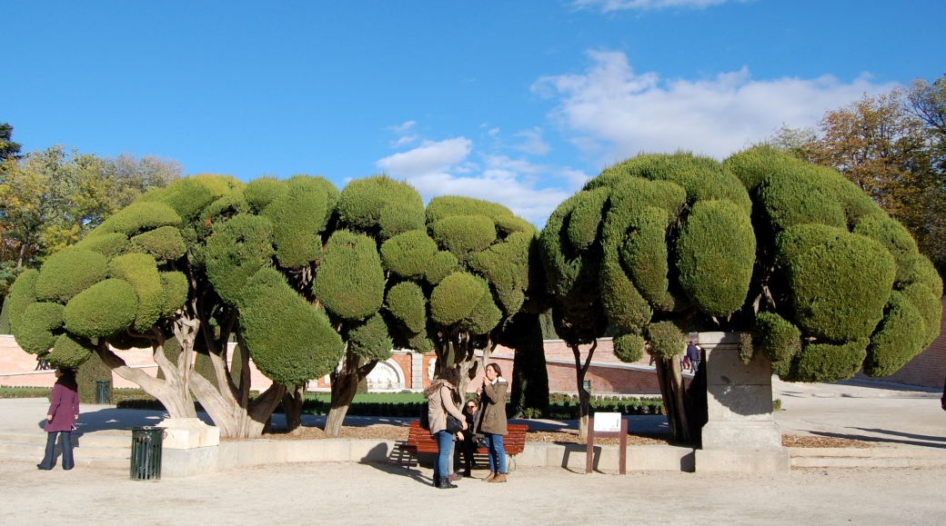Madrid Segovia Toledo 2012 947