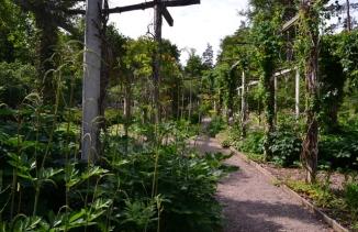 The Garden of Scent