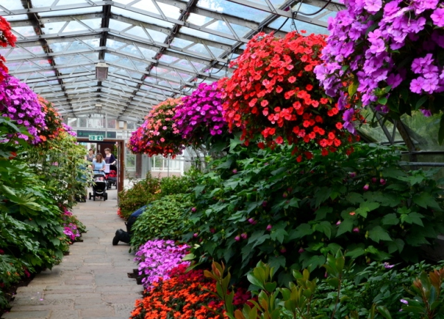 Victorian Corridors of hanging baskets