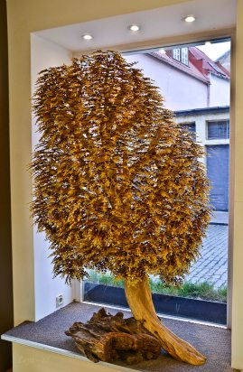 Amber tree in a jewellery's window - at least 100 cm high!