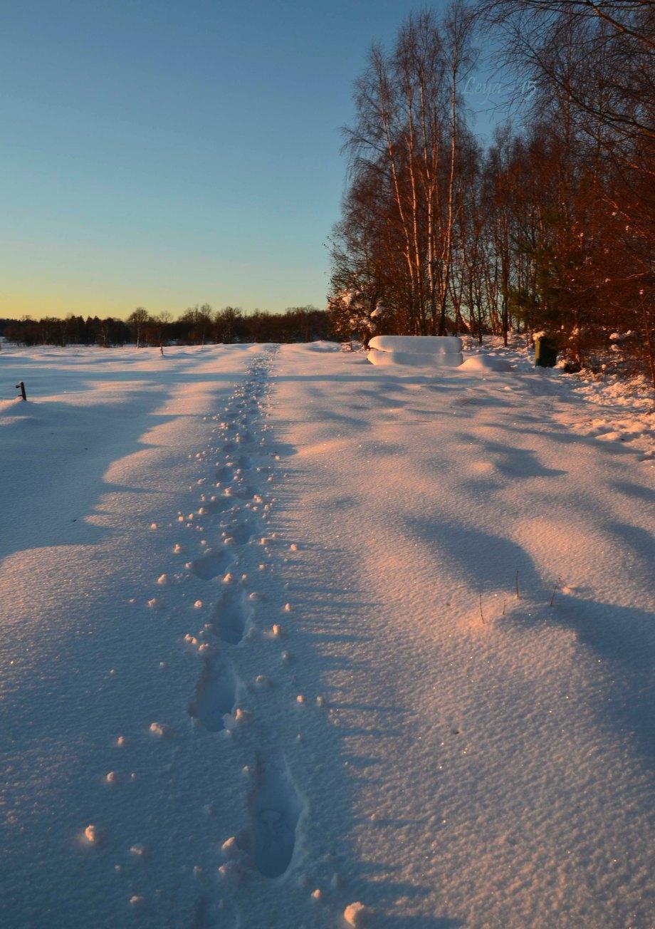 Hovdala och Magle soluppgång 031_copy