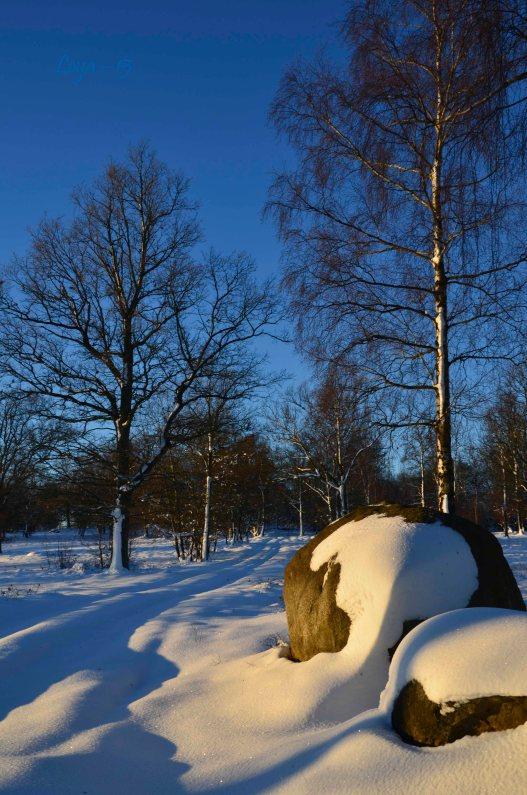 Hovdala och Magle soluppgång 081_copy
