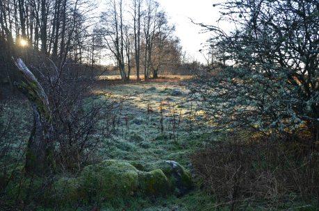 Vintervandring december 035_copy