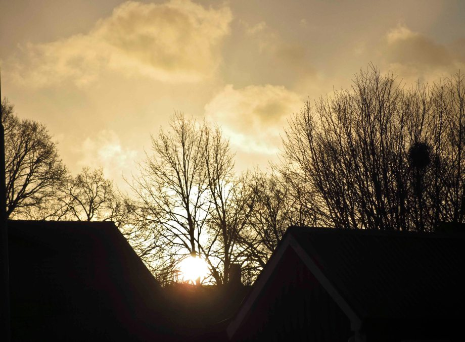 Winter Solstice 036_copy