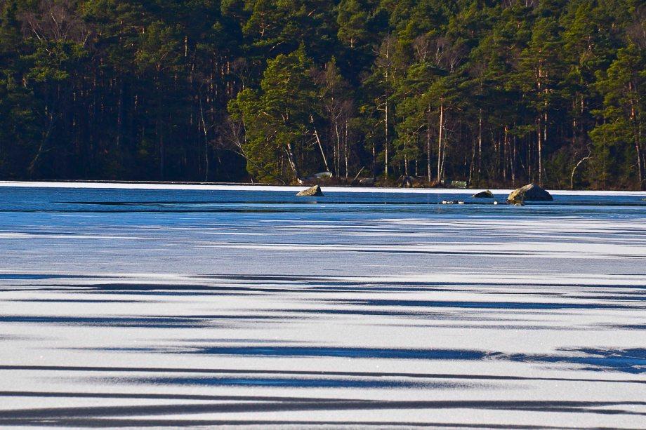 Blandat och fototisdag Värsjön och Hovdala 288_copy