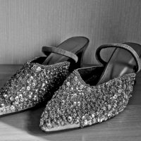 Cee's B&W Photo Challenge: Shoes or Feet, Human or Animal