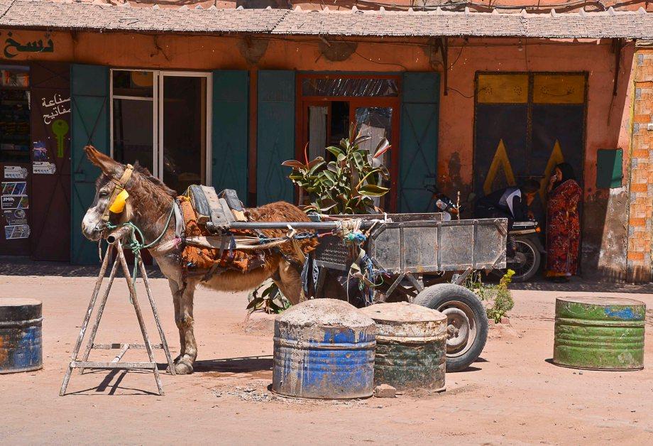 Marocko 034_copy
