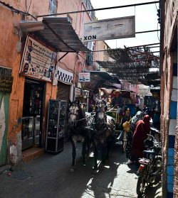 More of transport in the narrow alleys - here we had to flee into a shop