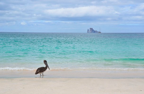 ...the Galapagos Islands. They were my greatest childhood dreams