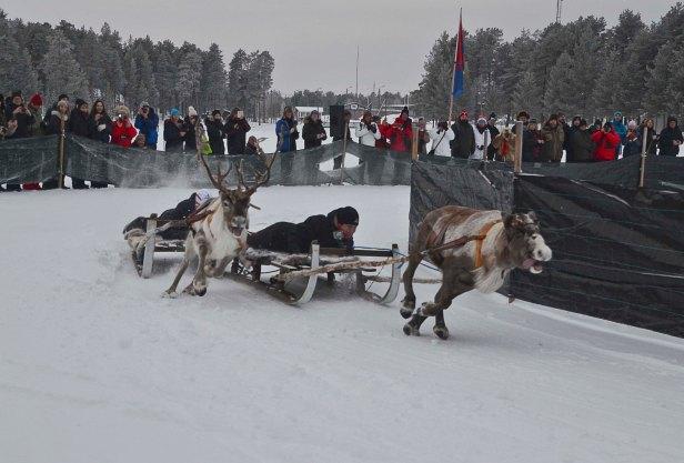 norrland-och-vasterbotten-219_copy1