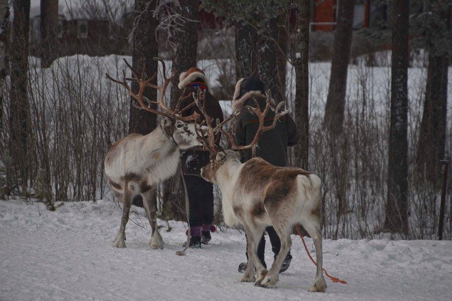 norrland-och-vasterbotten-325_copy