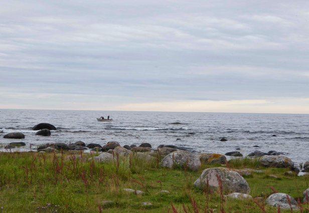 Small fishing boats...
