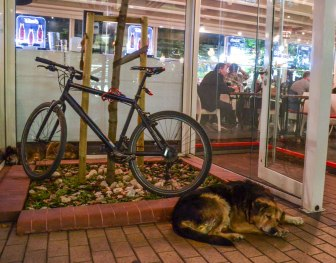 We met this old lady walking alone along Solunska Street at night. Later we found her - and a friend of hers - sleeping in the buzzle of restaurants and people