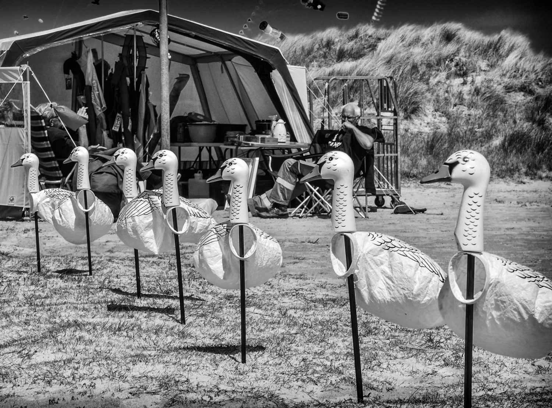 Drakflygningsfestival Fanö 151-Redigera