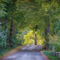 Thursday Thoughts - Along the road and around the bend...